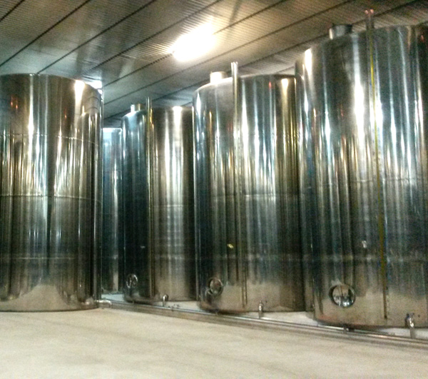 Fabrication of Extra Virgin olive oil in Spain
