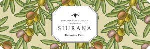 Designation of Origin Siurana: the flavour of Tarragona